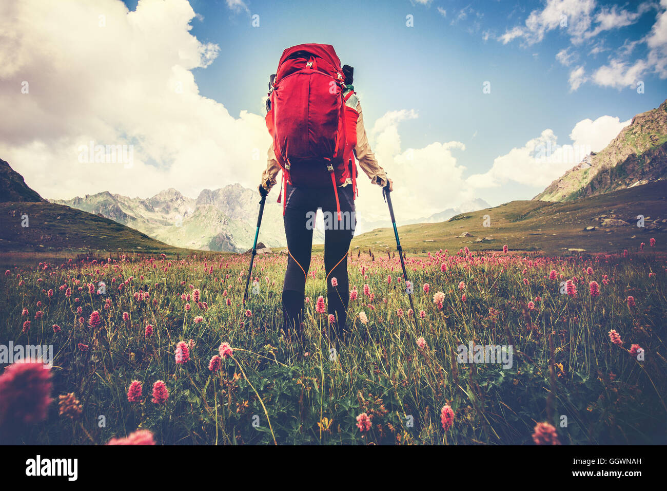 Woman Traveler with red backpack hiking Travel Lifestyle concept Summer vacations outdoor mountains and flowers - Stock Image