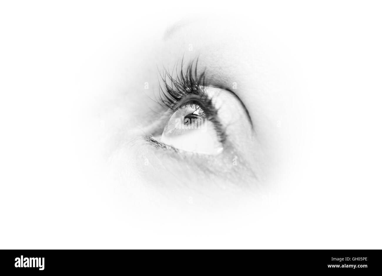 An eye looking up in close up detail - Stock Image
