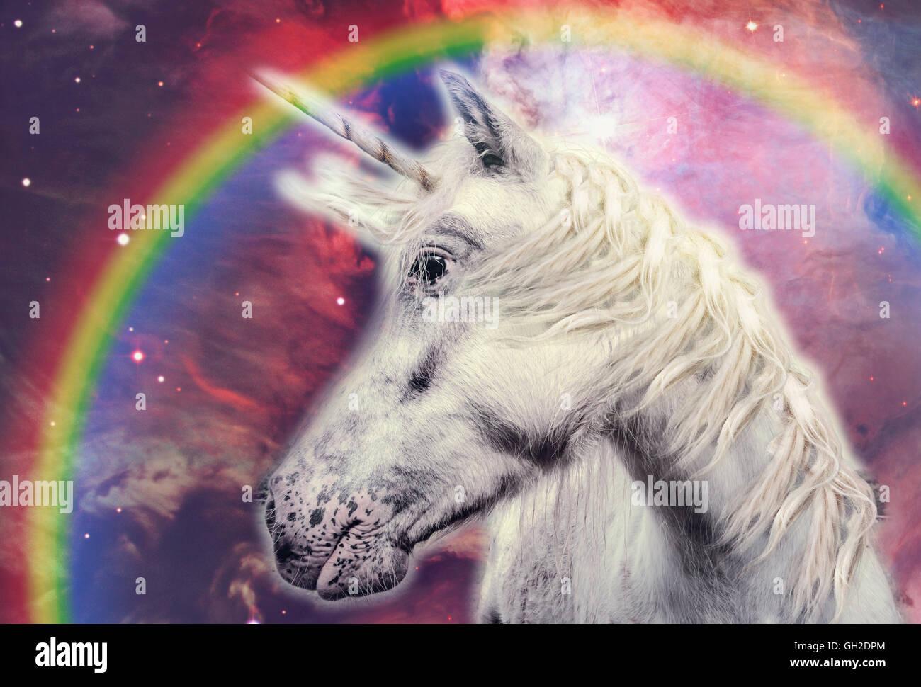 Unicorn With Rainbow In The Galaxy Stock Photo Alamy