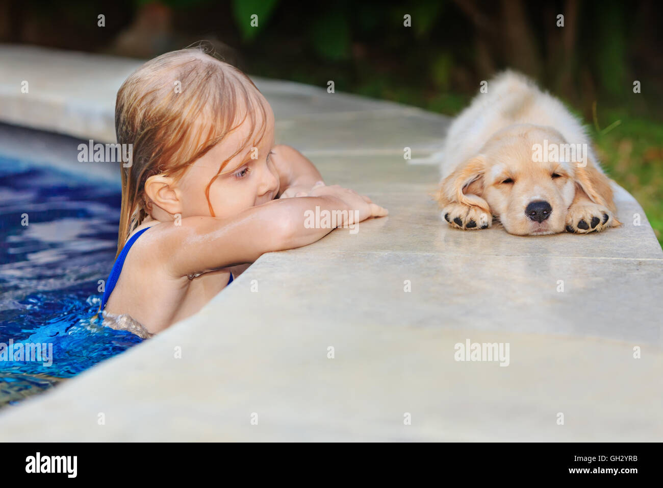 Funny photo of little baby swimming in outdoor pool look at lazy retriever puppy. Children water sports activity - Stock Image