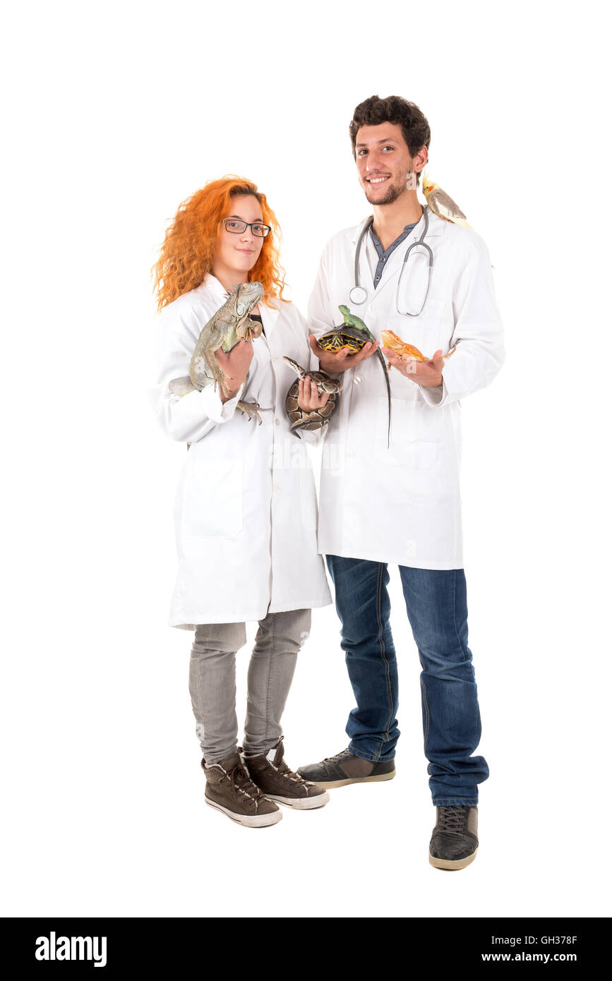 Veterinarian team with several animals isolated in white - Stock Image