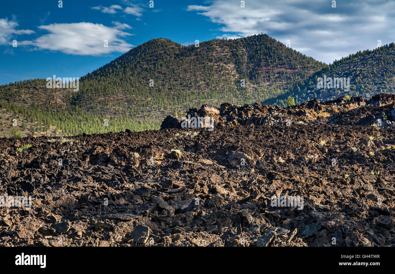 O'Leary Peak over Bonito Lava Flow, Sunset Crater Volcano National Monument, Arizona, USA - Stock Image
