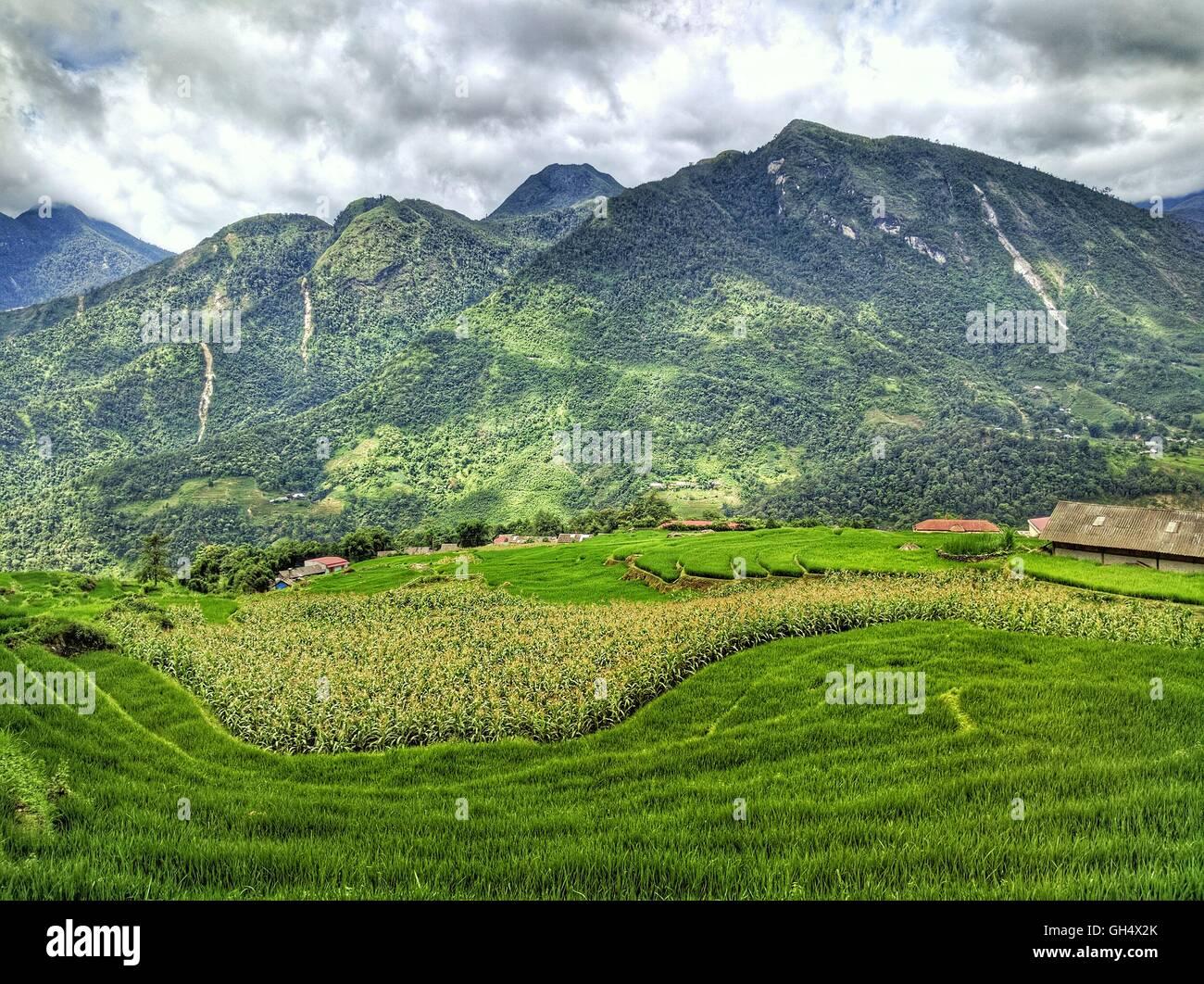 Mountains at Sapa - Stock Image