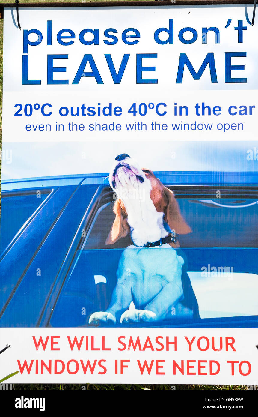 A poster warning of danger of leaving live animals in a locked car during hot weather leading to distress and death - Stock Image