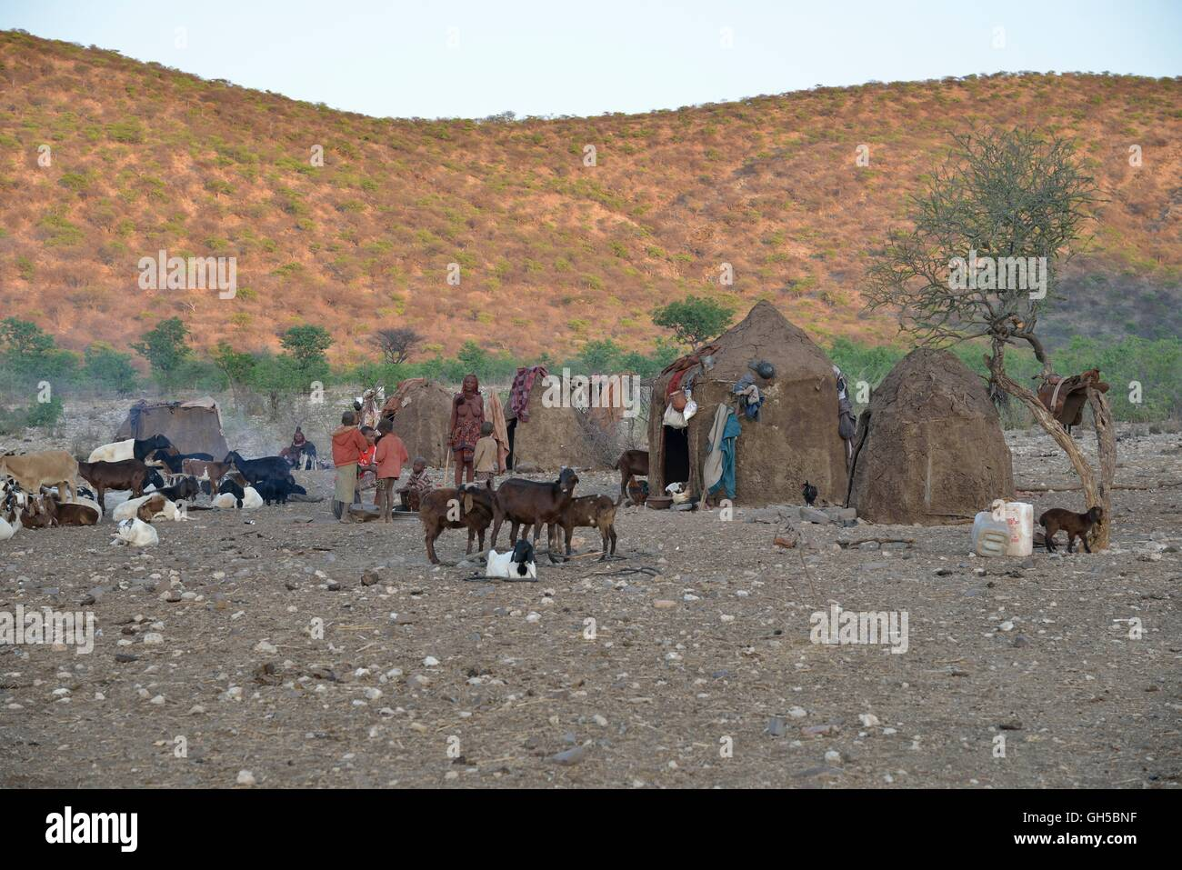 geography / travel, Namibia, Himba huts in the village Epaco, nearby Ombombo, Kaokoveld, Additional-Rights-Clearance - Stock Image