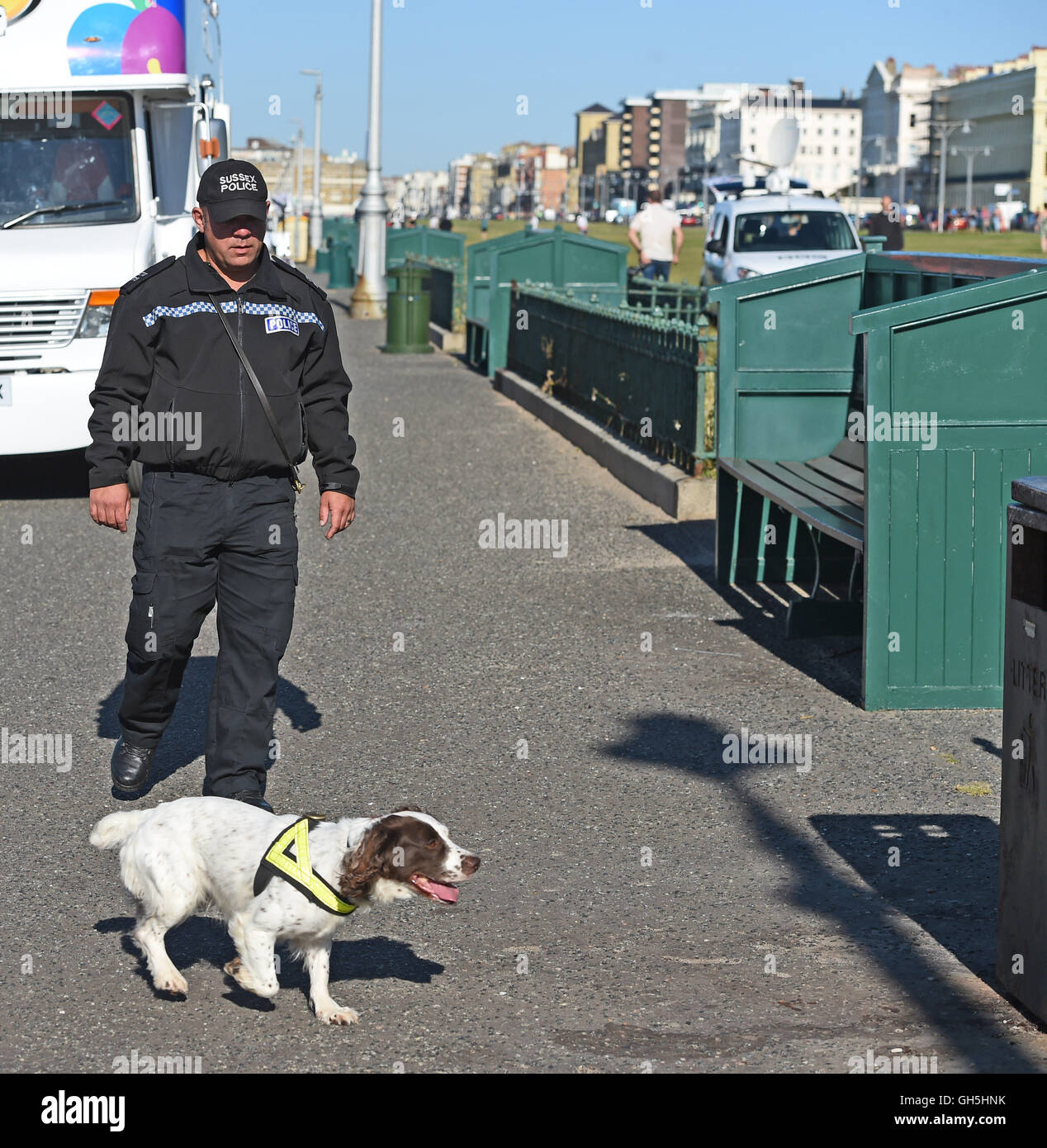 Police sniffer dog in action with handler Brighton seafront UK - Stock Image