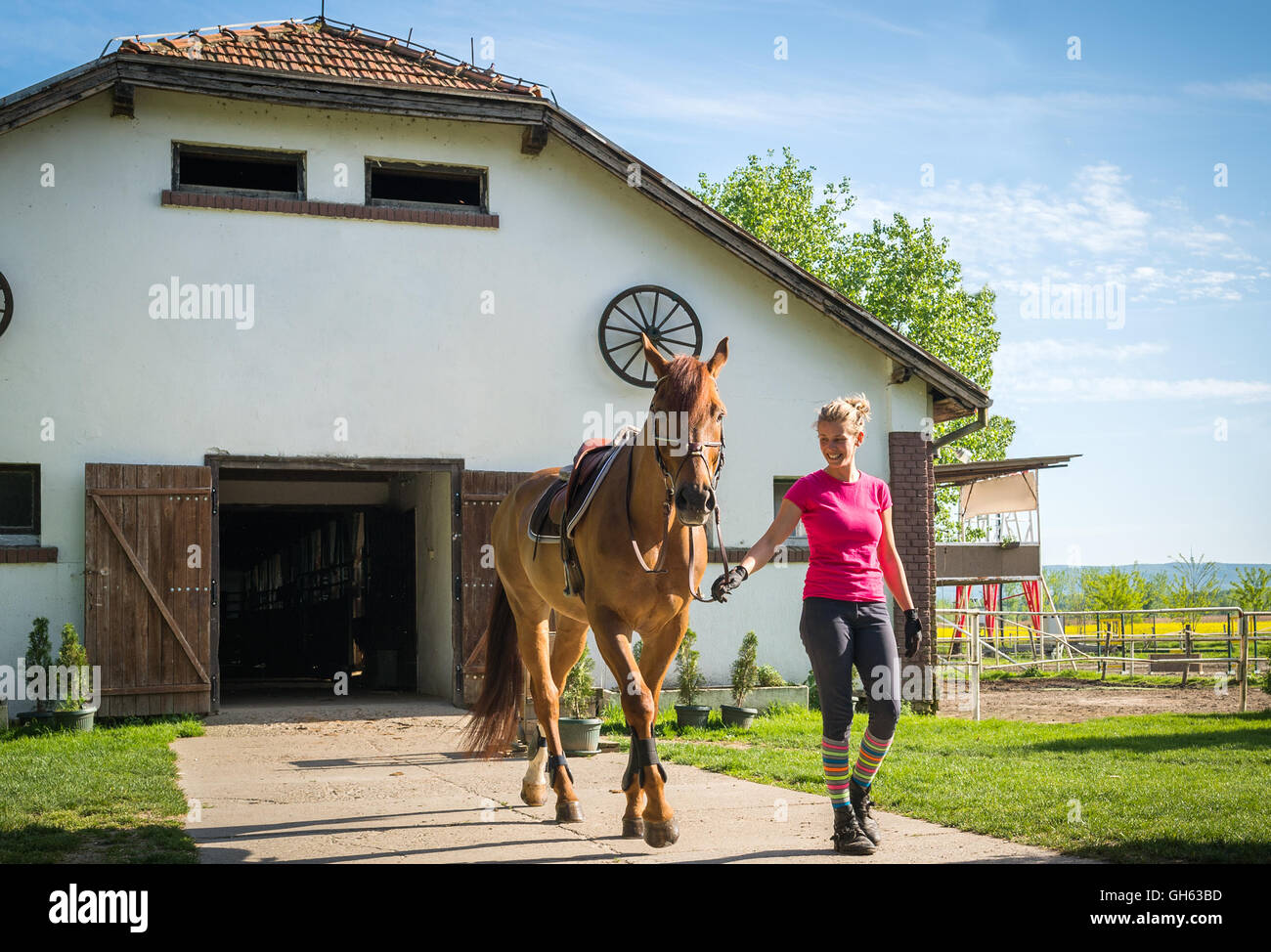 girl with horse in stable - Stock Image