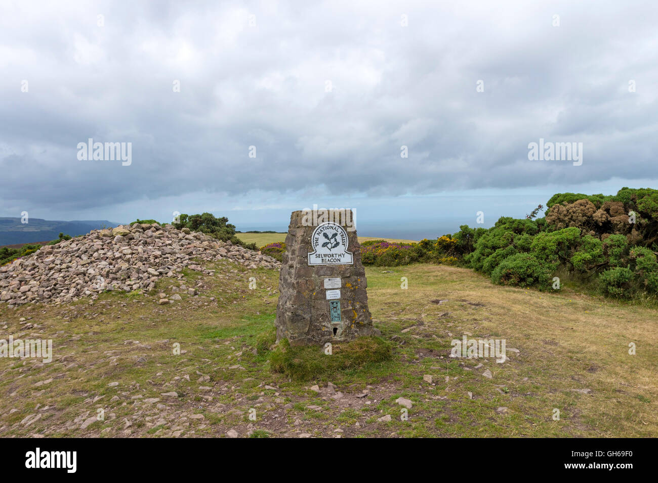 Selworthy Beacon from the South West Coast Path, Exmoor, Somerset, UK - Stock Image