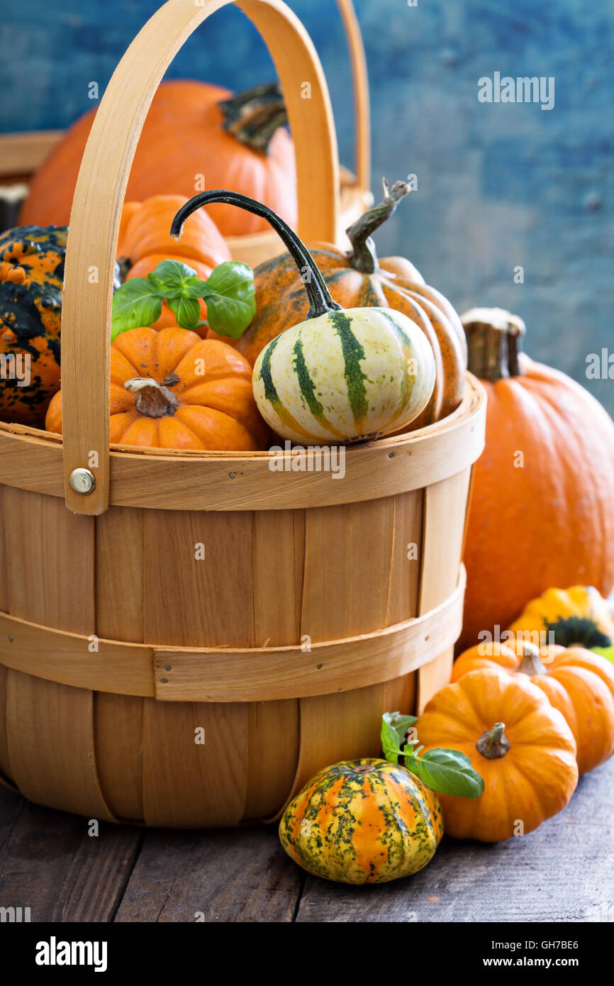 Variety of colorful decorative pumpkins in a basket - Stock Image