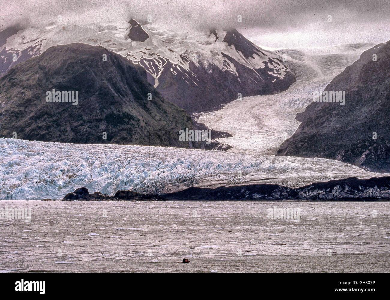 March 8, 2003 - Bernardo O'Higgins National Park, Chile - Impressive tidewater Amalia glacier, also known as - Stock Image