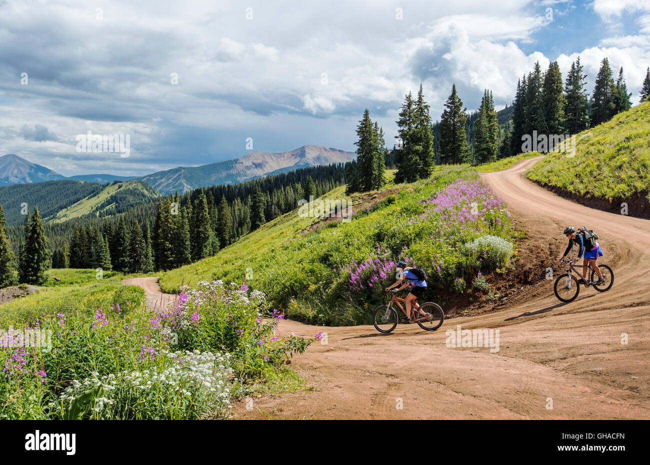 Two female mountain bikers riding down Washington Gulch Road north of Crested Butte; Colorado; USA - Stock Image