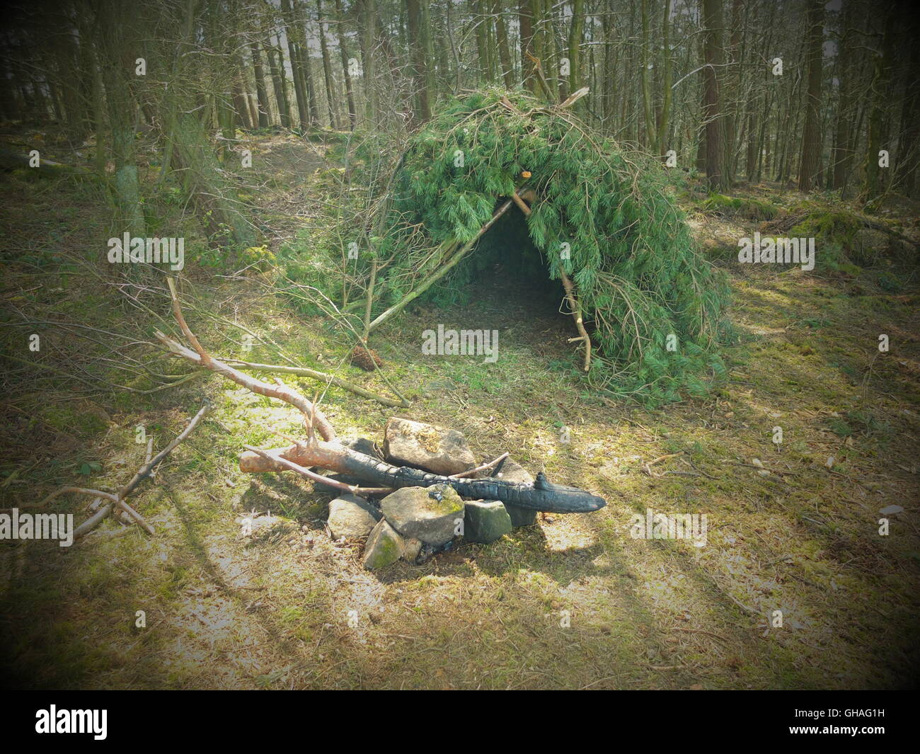 A naturally-built druid shelter in the woods by Doll Tor stone circle near Stanton-in-the-Peak, Derbyshire, UK - Stock Image