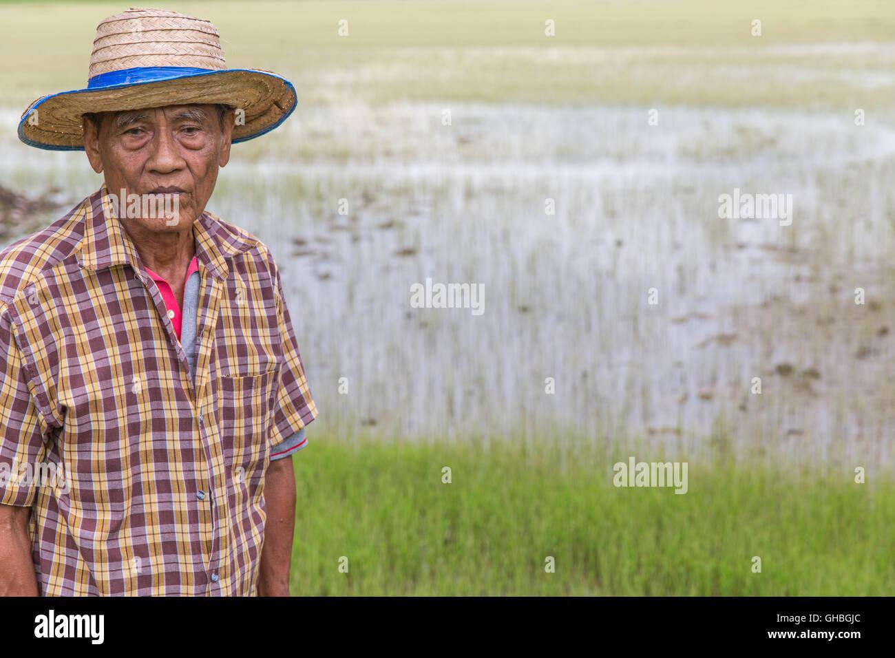 Senior Thai rice farmer looking tired sad - Stock Image