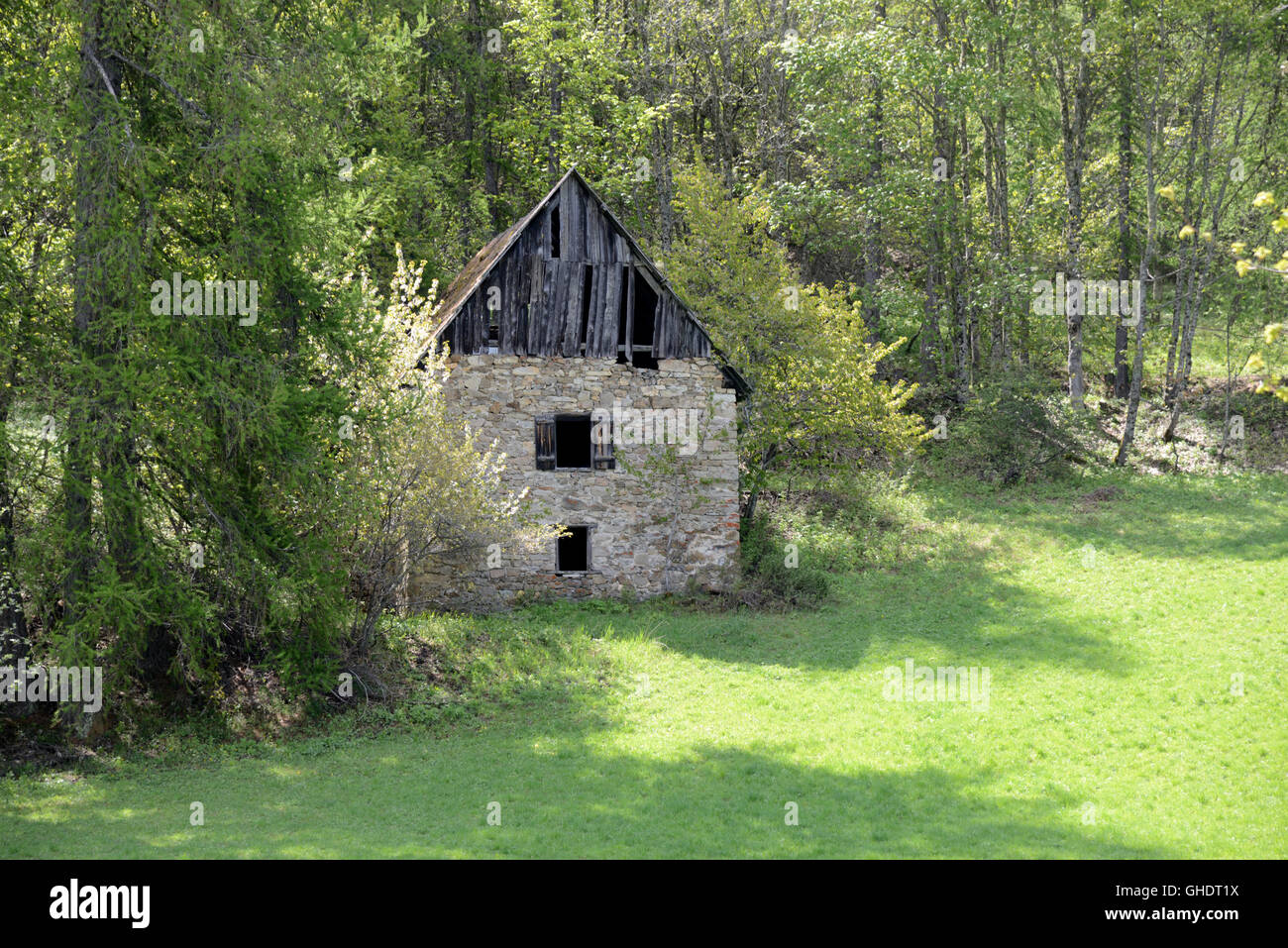 Ruined or Abandoned Stone & Timber Alpine Chalet in the Forest near Colmars-les-Alpes French Alps France - Stock Image