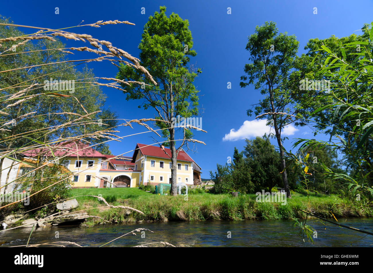 Ulrichsberg: Farm on the creek Große Mühl, Austria, Oberösterreich, Upper Austria, Mühlviertel - Stock Image