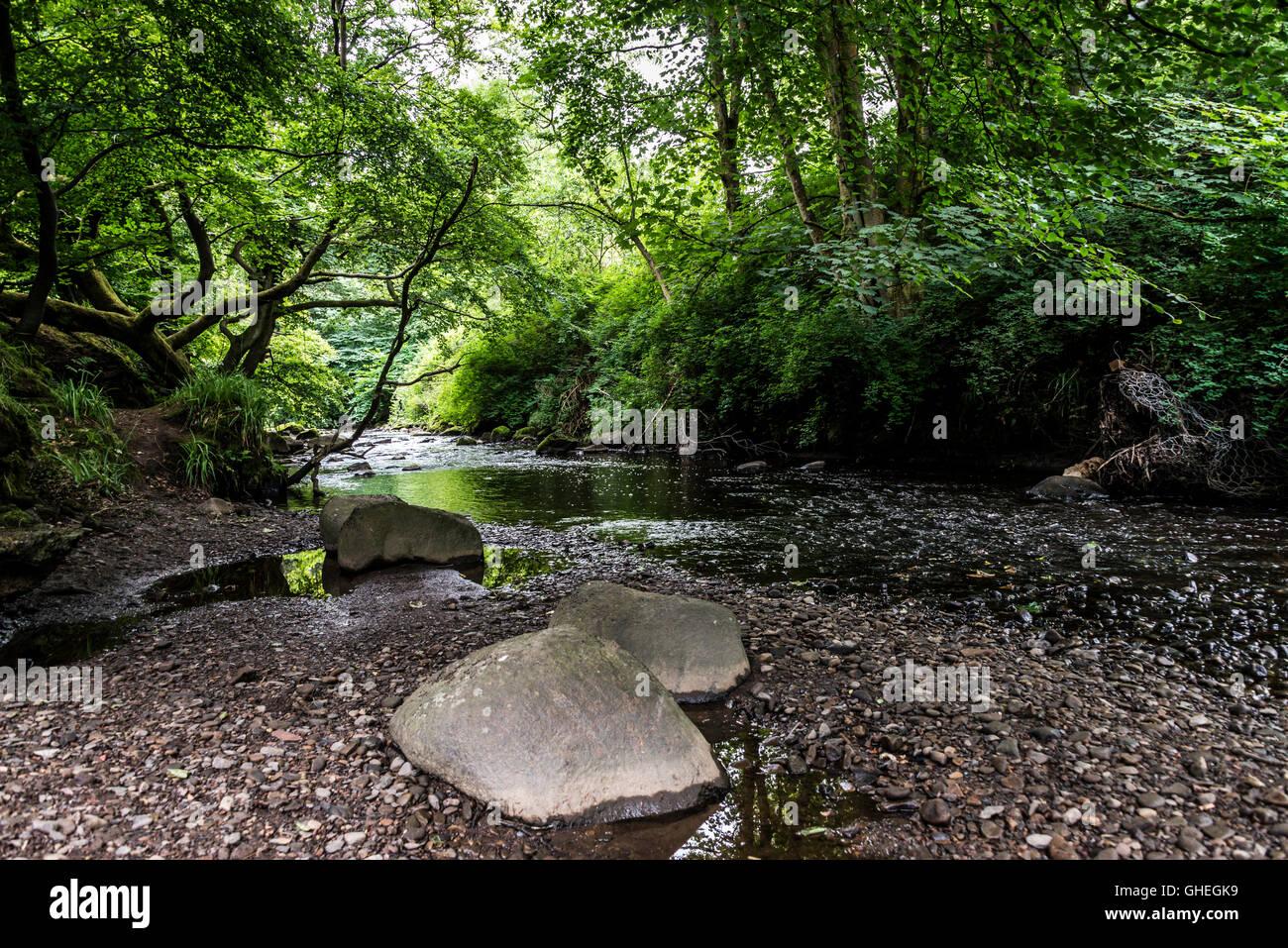 Harwood water, Livingston, West Lothian, Scotland - Stock Image