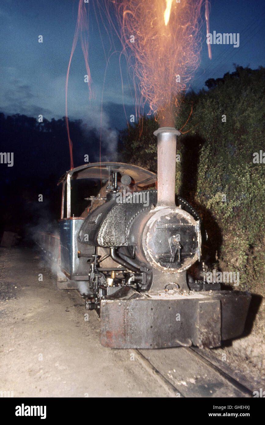 """Sally"", a standard 2 foot gauge Bagnall 0-4-0ST of 1930 at work on the Tipong Colliery system in Upper Assam. - Stock Image"