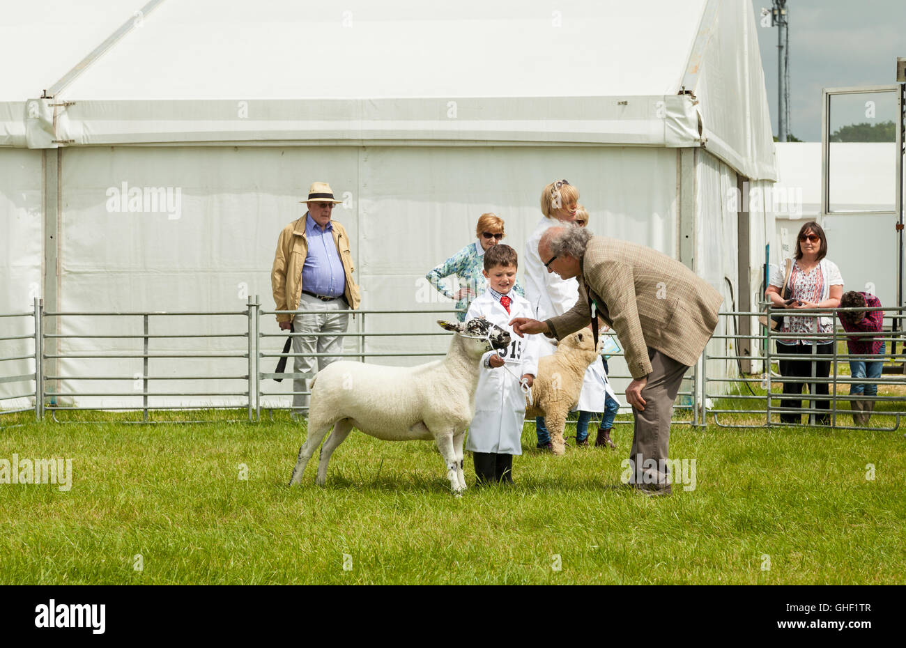 County Show Uk Stock Photos & County Show Uk Stock Images