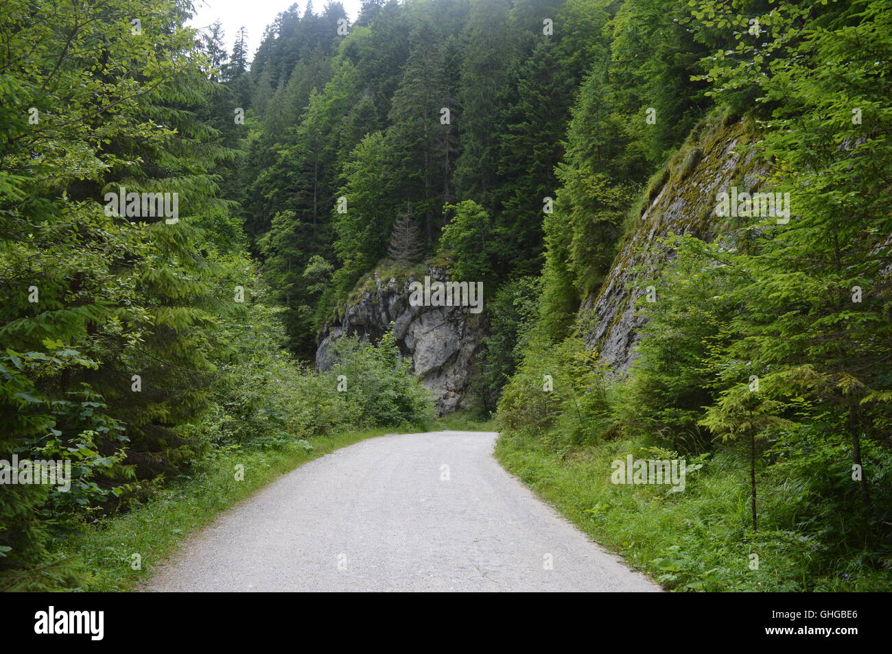 Unpaved road in a valley - Stock Image