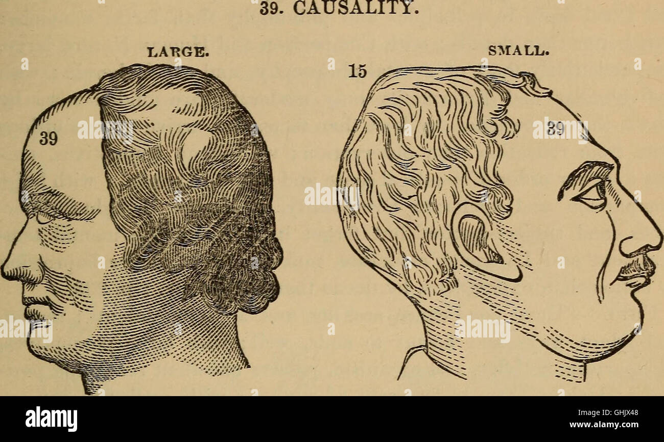The practical phrenologist and recorder and delineator of the character and talents of (blank), as marked by (blank) Stock Photo