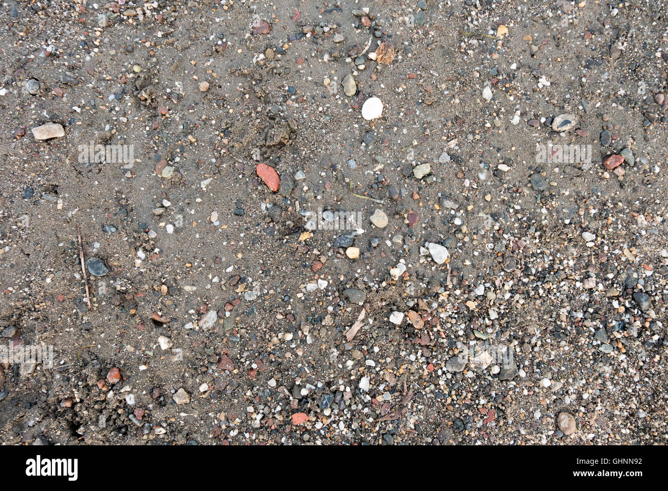 Sea sand texture made of shell and stone pieces. Seamless texture - Stock Image
