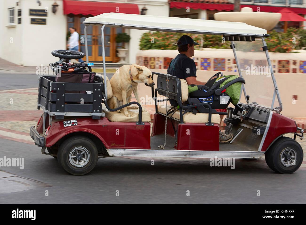 Passenger Golf Cart Rental Catalina Island