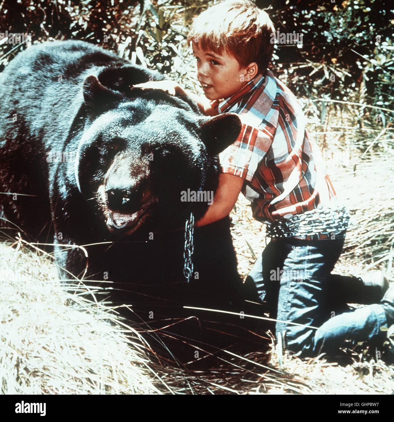 der sanfte ben Der siebenjährige Mark Wedloe (CLINT HOWARD) freundet sich mit einem Bärenjungen an... - Stock Image