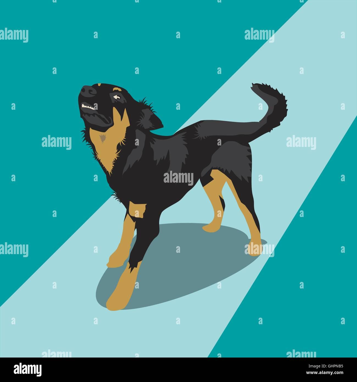 Vicious Black Dog Stock Photos & Vicious Black Dog Stock Images - Alamy