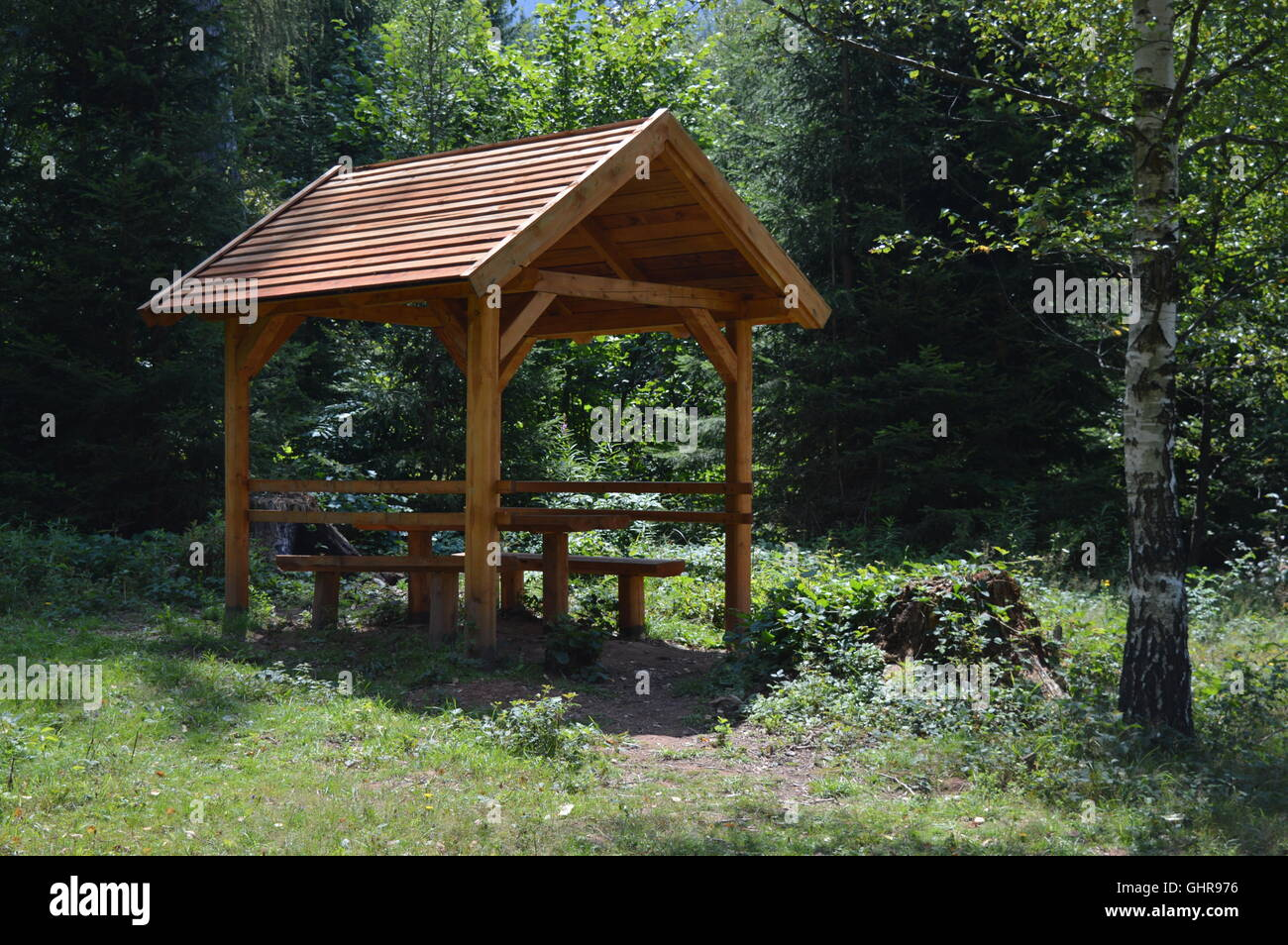 Forest resting place - Stock Image