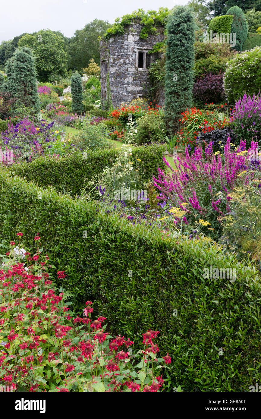 Thin hedges lead the eye towards the tower in the walled garden at the Garden House, Devon, UK - Stock Image