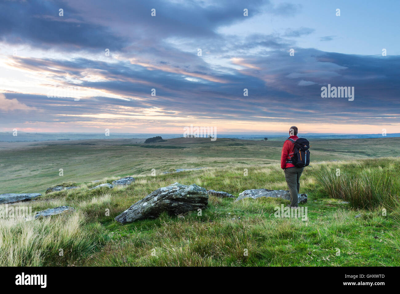Walker Enjoying the View Over Cotherstone Moor Towards Loups's Hill from Goldsborough, Baldersdale, Teesdale, - Stock Image
