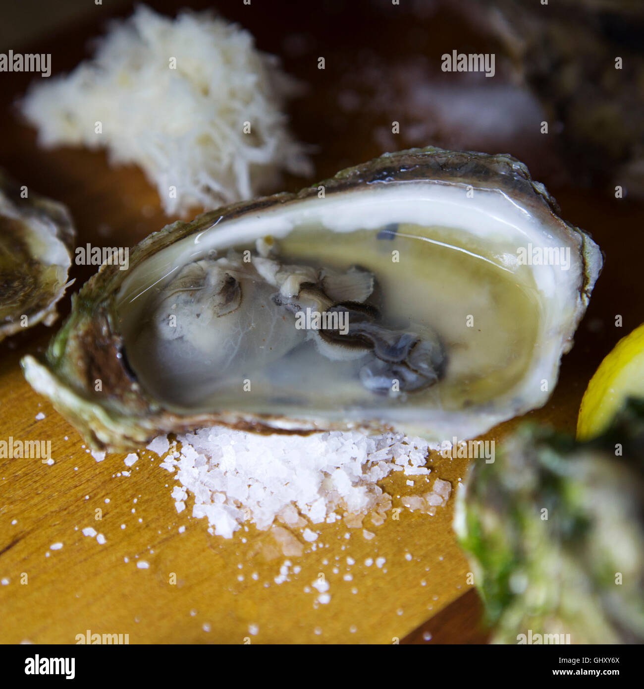 Price Edward Island oysters served at St John's in Newfoundland and Labrador, Canada. Stock Photo