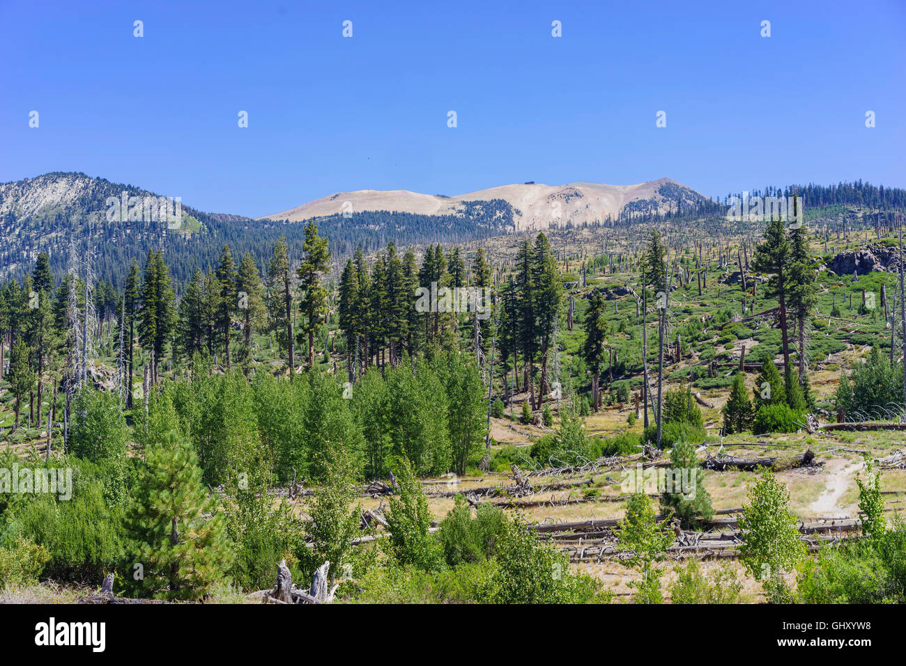 The trace of the Rainbow Fire of Devils Postpile National Monument - Stock Image