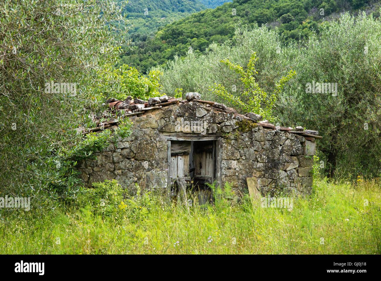 a derelict hut nr Castel del Piano, Grosseto, Tuscany, Italy - Stock Image
