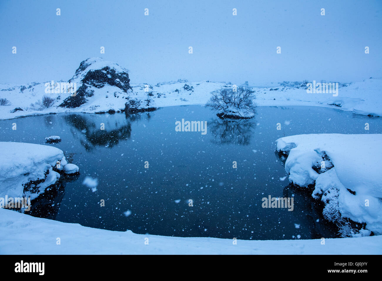 snow falling at Mývatn, winter in north eastern Iceland - Stock Image