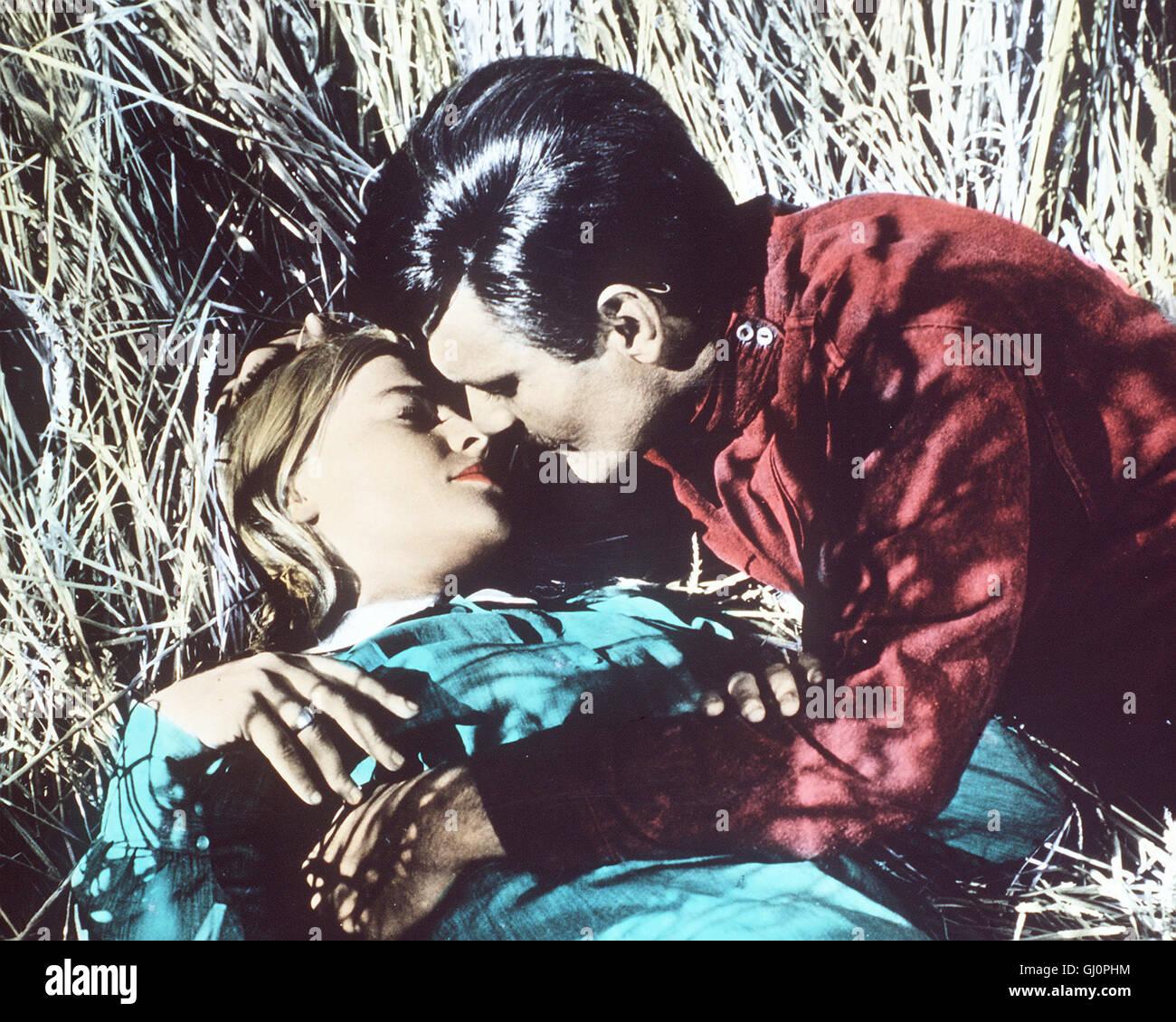 DOKTOR SCHIWAGO Doctor Zhivago USA 1965 - David Lean Im zaristischen Moskau wächst der Waise Jurij Schiwago (OMAR SHARIF) bei der großbürgerlichen Familie Gromeko auf und studiert Medizin. Er heiratet auf Wunsch seiner Pflegeeltern deren Tochter Tonya, die er zwar sehr vereehrt - jedoch nicht liebt. Zufällig kreuzen sich seine Wege immer wieder mit denen der schönen, jungen Lara (JULIE CHRISTIE), die mit dem Revolutionär Pasha verheiratet ist. Als er sie in einem Lazarett als Schwester wiedertrifft, keimt zwischen beiden eine leidenschaftliche Liebe auf. Regie: David Lean aka. Doctor Zhivago Stock Photo