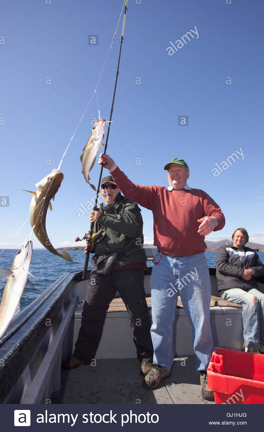 A man is helped to reel in his catch whilst fishing during a wildlife watching and fishing boat trip off the coast Stock Photo