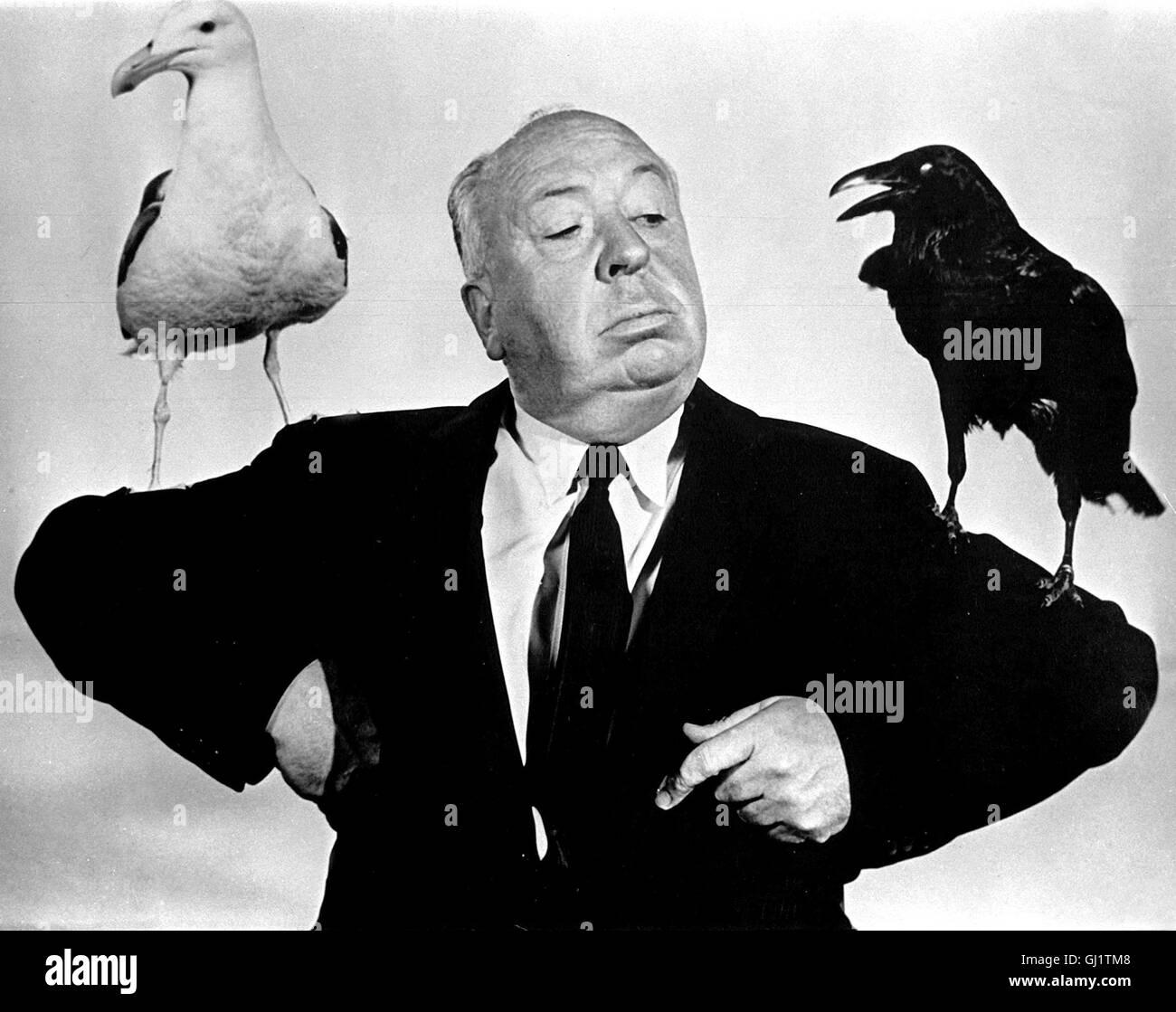 hitchcock vögel