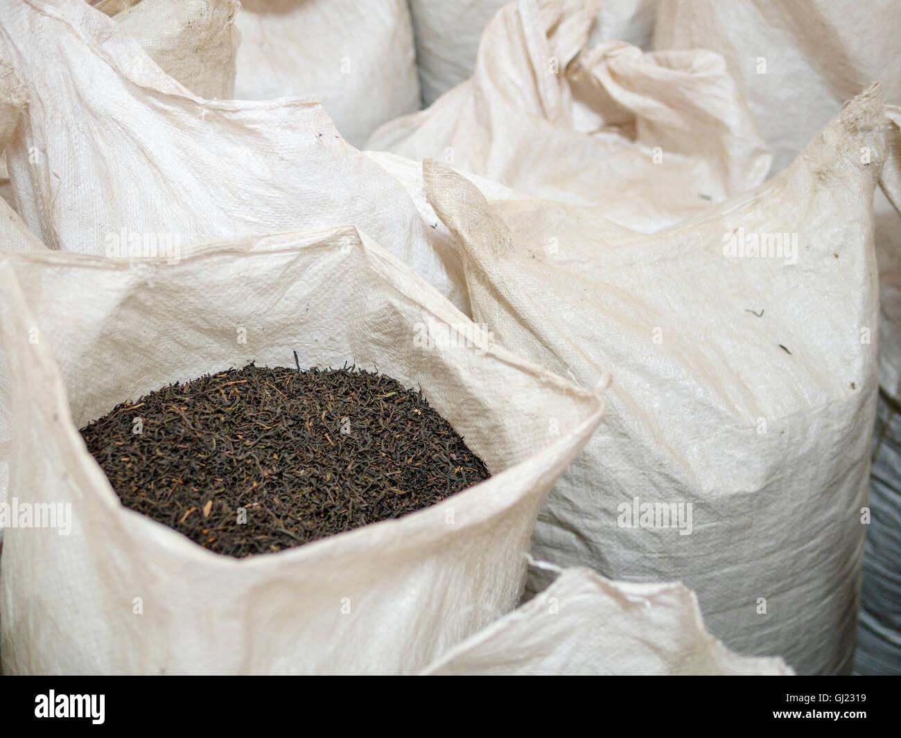 Sacks of Black tea await sorting . Woven plastic  bags of black tea await sorting and packaging at the plantation Stock Photo