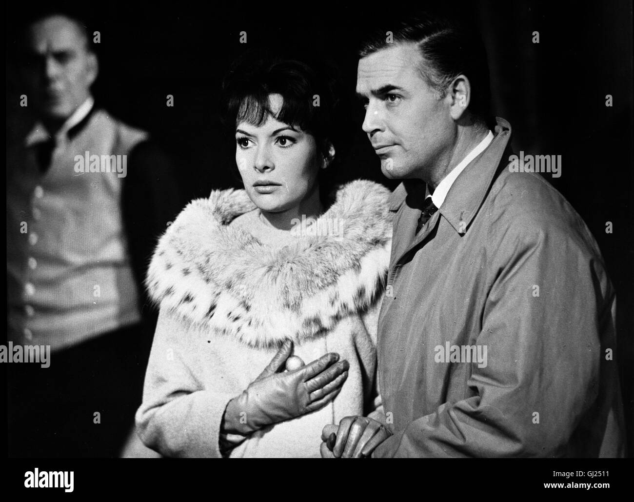 Karin dor black and white stock photos images alamy - Spinne im zimmer was tun ...