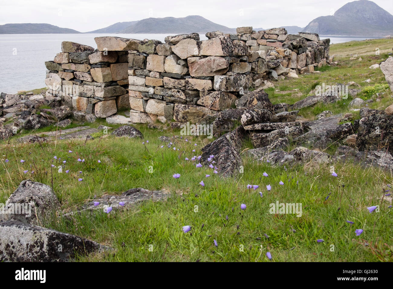 Remains of 14thc Hvalsey farmstead Banquet Hall, one of best preserved Norse ruins in the country. Hvalsey, Qaqortoq, - Stock Image
