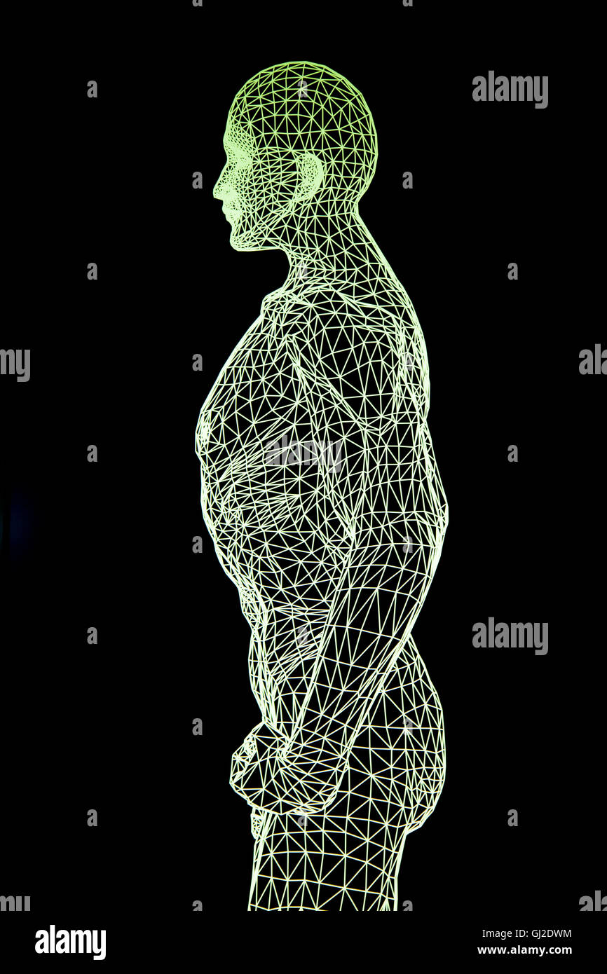 Computer generated image of the human body - Stock Image