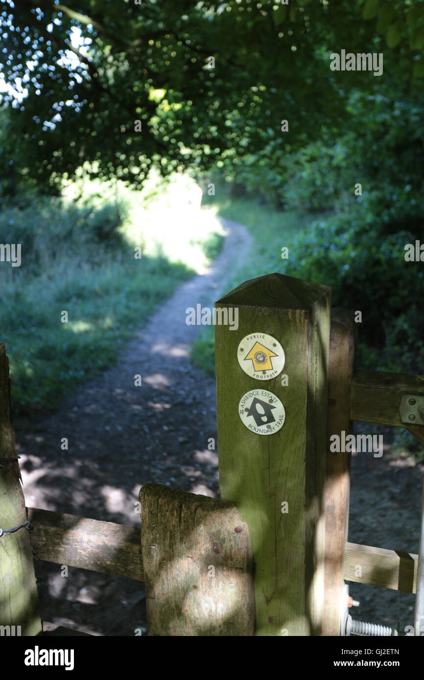 A gate on a footpath in Hertfordshire showing part of the Ashridge boundary walk. - Stock Image