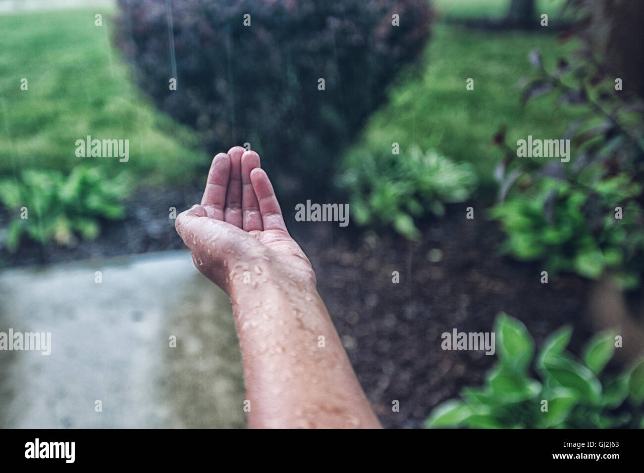 Girls cupped hand catching rain - Stock Image