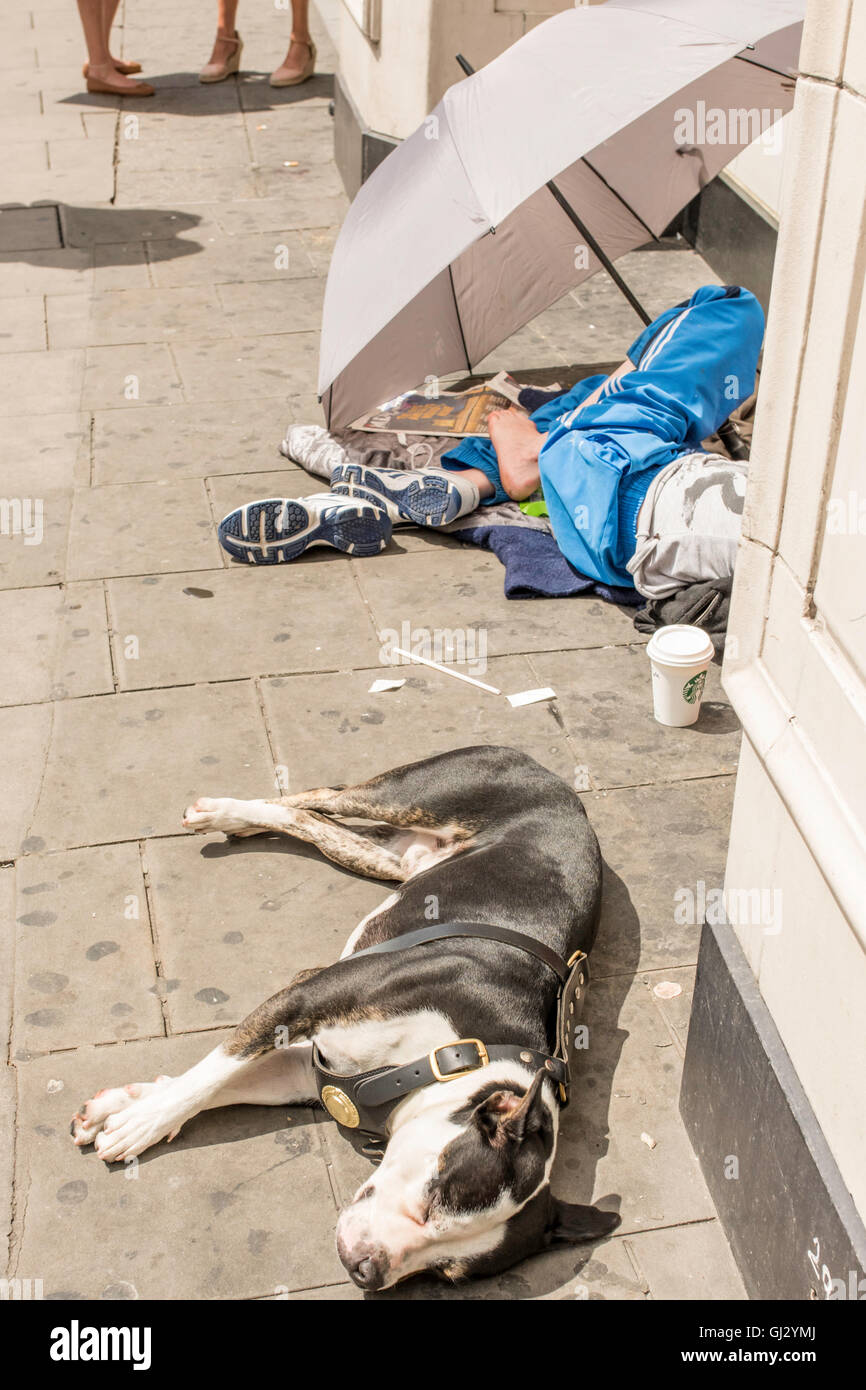 A homeless woman staying out of the sunshine by sitting underneath an umbrella on the pavement. Her pet dog is sleeping Stock Photo