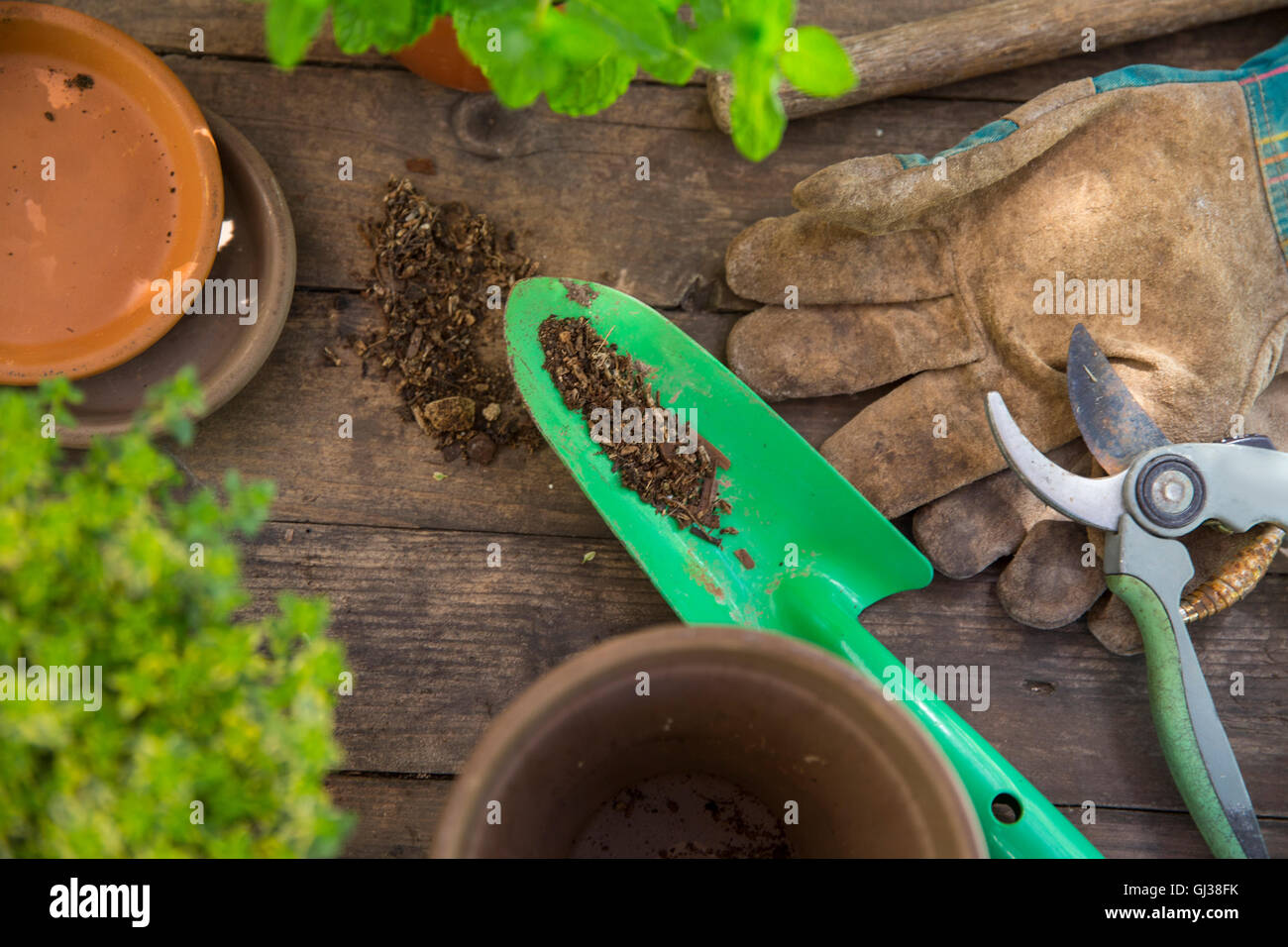 Overhead view of garden trowel and gloves on table - Stock Image