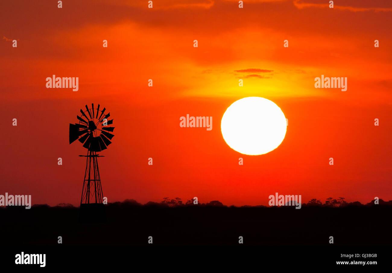 Windmill at sunset, Etosha National Park, Namibia - Stock Image