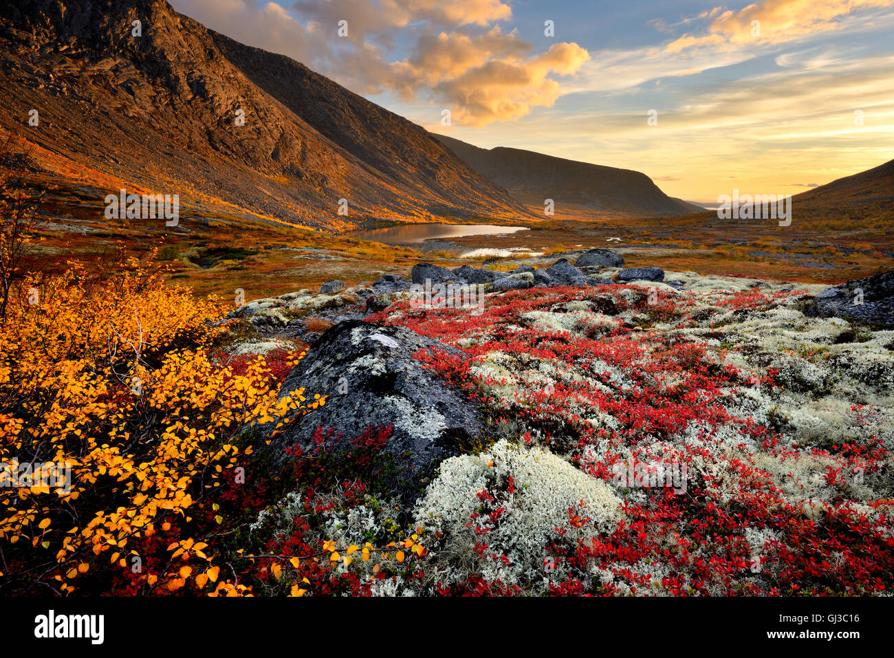 Autumn coloured valley and Malaya Belaya river, Khibiny mountains, Kola Peninsula, Russia - Stock Image