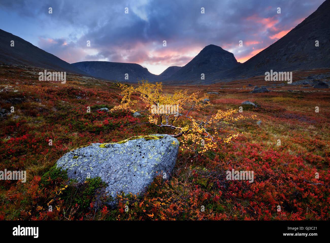 Autumn colours and boulder in Malaya Belaya River valley at dusk, Khibiny mountains, Kola Peninsula, Russia - Stock Image