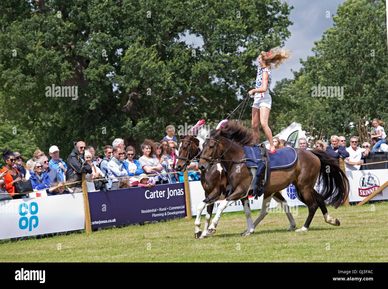 Crowds watch girl straddling backs of two galloping horse Countryfile Live Blenheim UK - Stock Image
